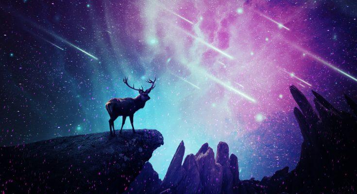 Native American Animal Birth Totem and Native American Zodiac Signs