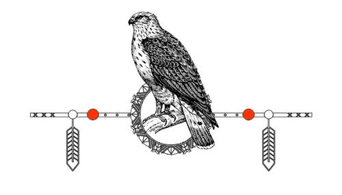 Native American Animal Birth Totem Hawk