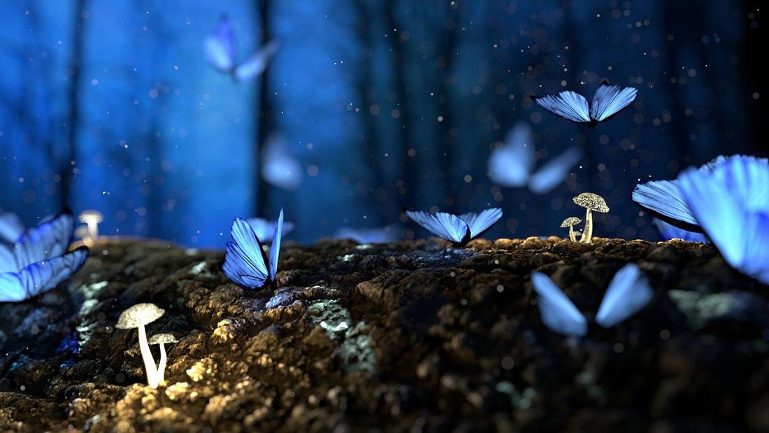 Symbolic Living and Natural Magic