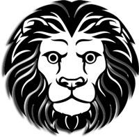 Zodiac Traits - Leo