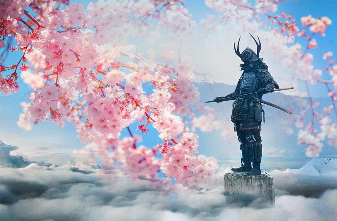 Cherry Blossom Meaning and Samurai Symbol for Strength