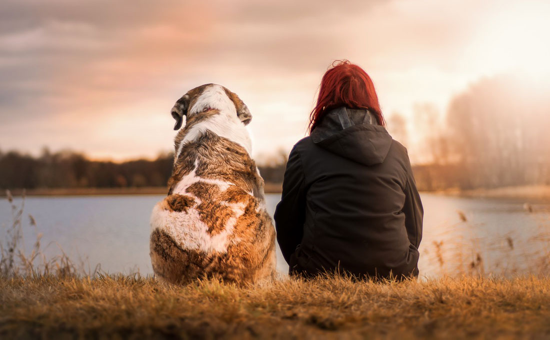 Shamanic Healing and Connecting With Pets