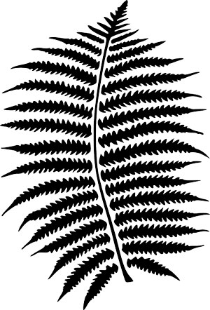 Nature's Symbols for Survivor - Fern
