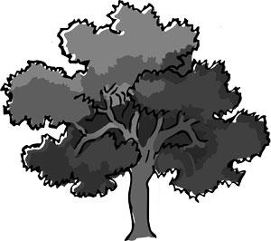 Symbols for Survivor in Nature - Oak