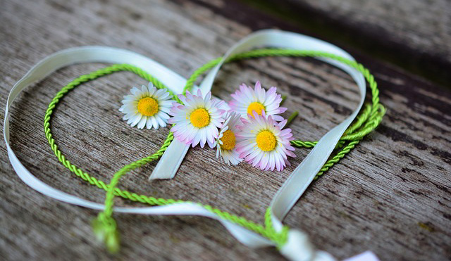 Daisy Meaning as a Love Symbol