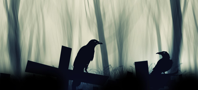 Interpreting Dead Crow Meaning