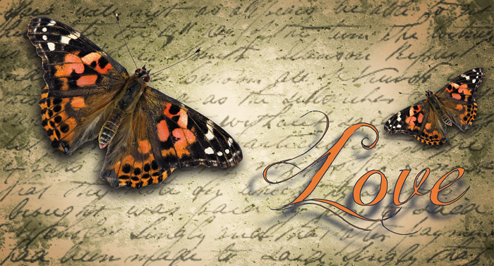 Symbolic Butterfly Love Messages