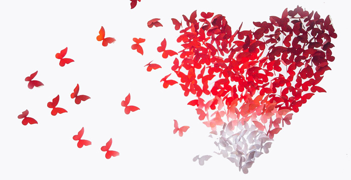 Symbolic Butterfly Messages of Love