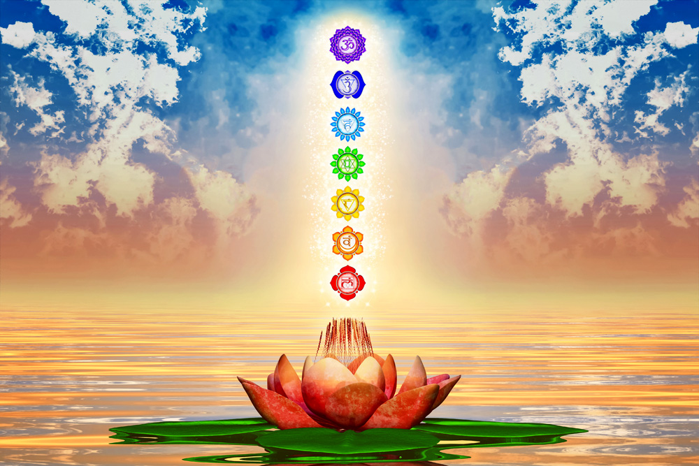 How Does Your Chakra Garden Grow? Chakra Flower Associations