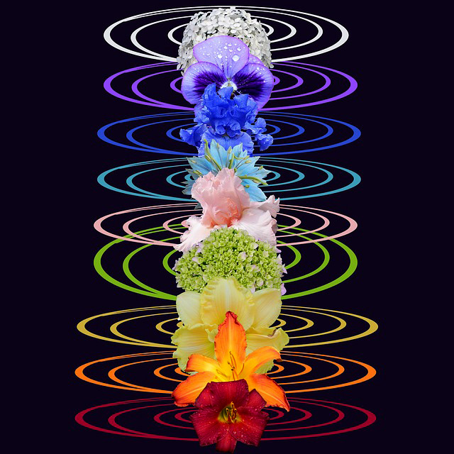 Flowers Associated with Chakras