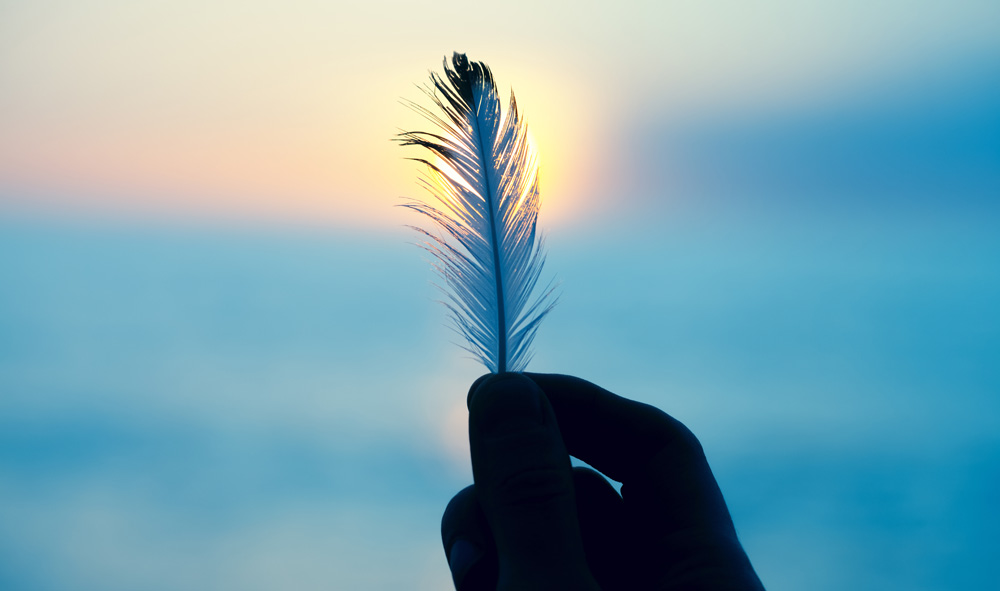 Finding Feathers Meaning