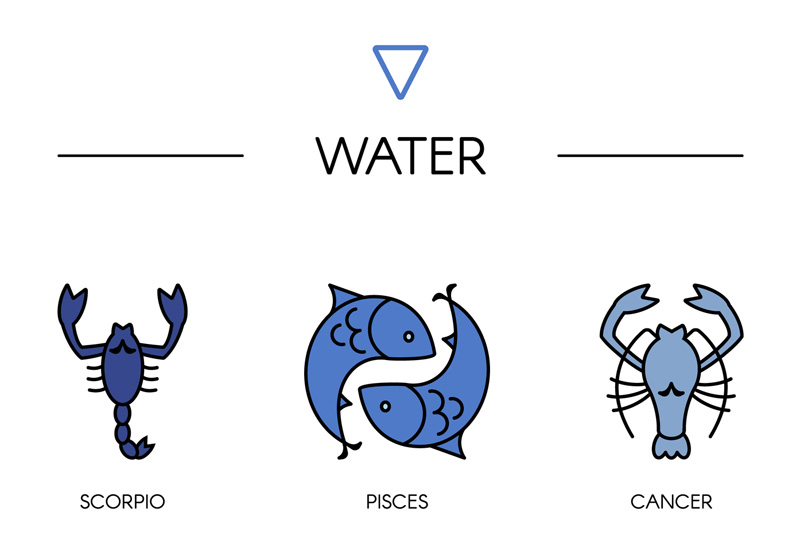 Family Zodiac Guide - Water Signs