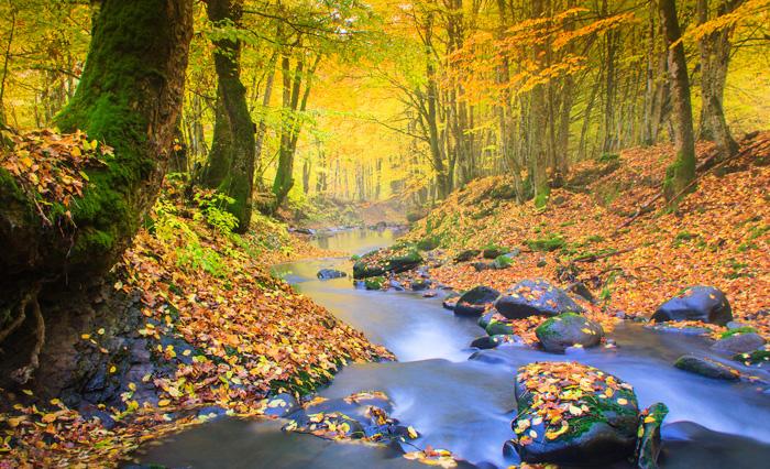 Autumn Equinix Meaning
